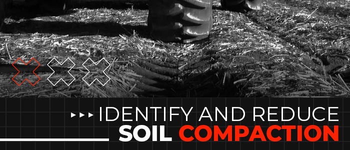 How to Identify and Reduce Soil Compaction